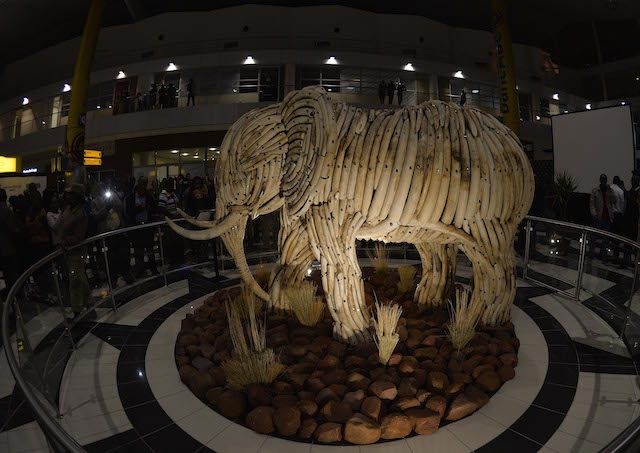 Life Size Elephant Installation Unveiled In Botswana